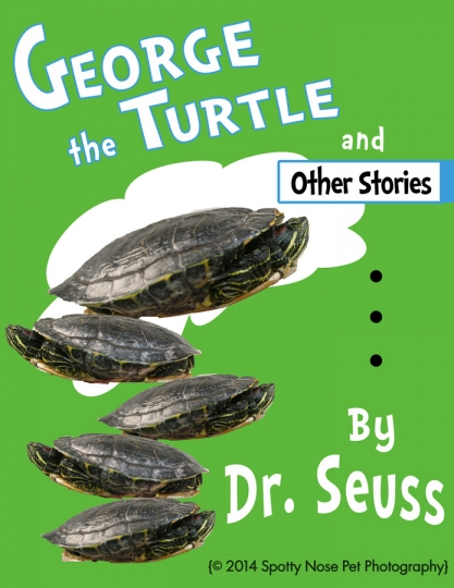 Book-Cover.Turtle
